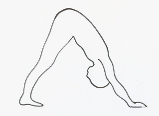 Quelle: http://www.amandatolerwoodward.com/wp-content/uploads/2015/07/downward-facing-dog-yoga-pose.jpg